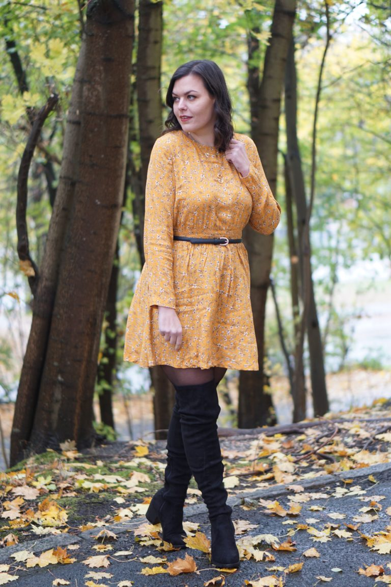 Anna Curve Fall Dresses 038 Overknees file name