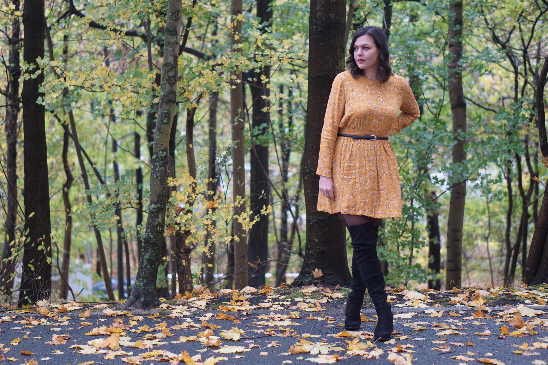 Fall Dresses & Overknees
